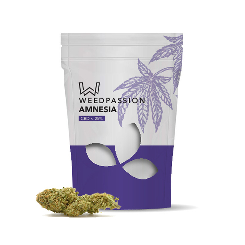 Weedpassion Amnesia 25% cbd